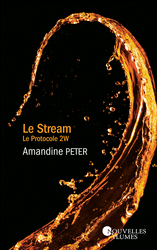 Vente EBooks : Le Stream - Tome 2 - Ebook  - Amandine Peter